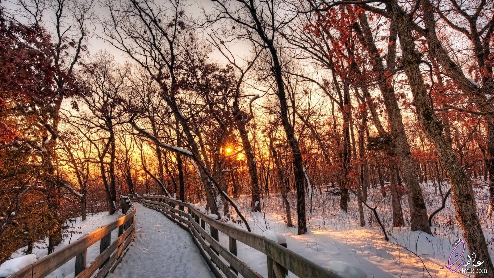 خلفيات فصل الشتاء،اجمل الصور المعبره عن الشتاء 2018،صور مناظر طبيعية للشتاء 2018 جميلة