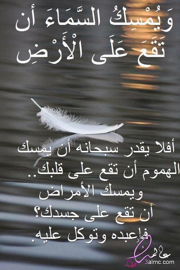 مجالس تدبر القرآن259