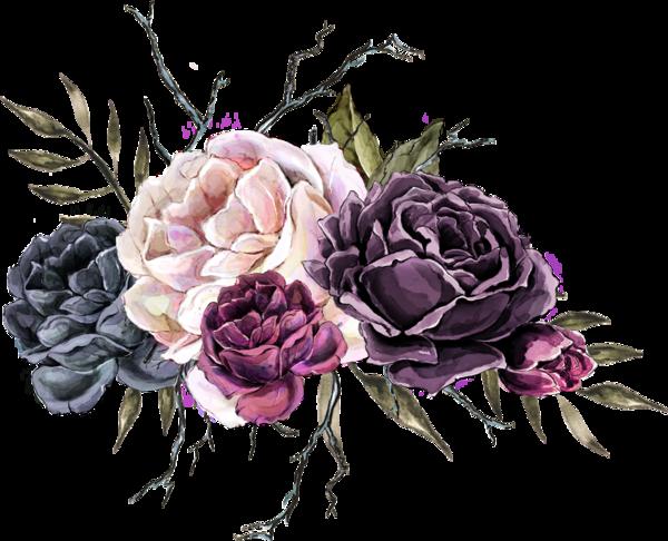 سكرابز ورد وزهور بدون تحميل سكرابز ورد وزهور بخلفيات شفافة فيكتور ورد Png منتدي عالمك