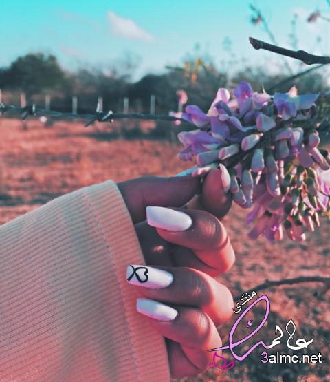 صور ايد بنت,رمزيات فتاه ماسكه ورده،صور يد ماسكة وردة،يد ماسكه ورده حمراء