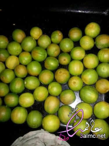 كيفية صنع الليمون الأسود ( اللومي ),طريقة عمل الليمون المجفف بالصور,تجربتي مع الليمون الاسود