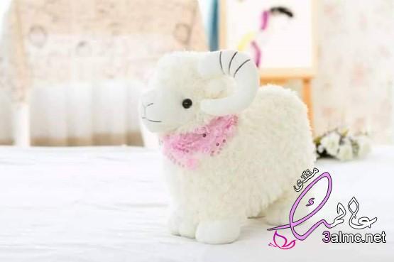 الخروف الصيني ظاهرة عيد الأضحى بالأسواق المصرية،خروف العيد.. هدية المتحابين في عيد الأضحى