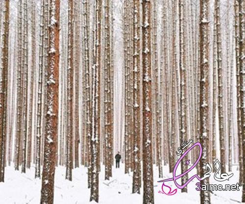 صور عن الشتاء أحلي خلفيات وصور لفصل الشتاء بجودة hd،صور شتوية2020