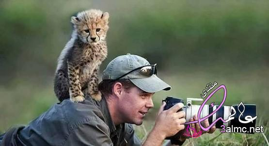 بالصور.. عشق الحيوانات للتصوير الفوتوغرافي