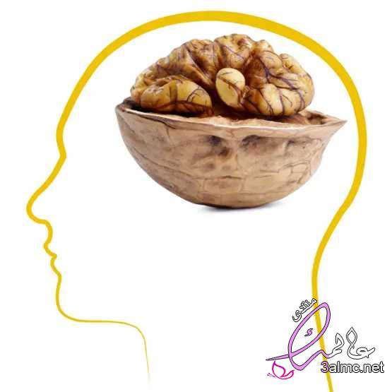 إنقصاص الوزن وتقوية الذاكرة.. فوائد الجوز المذهلة 2020