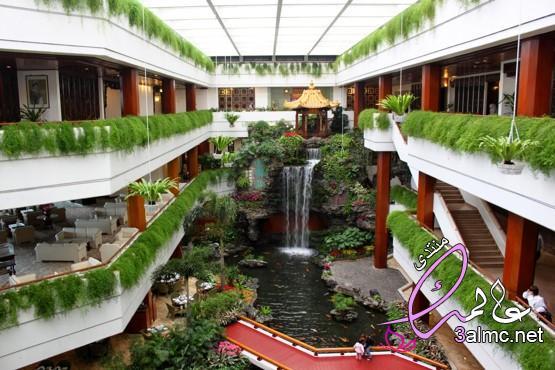بالصور فندق مانون سويتس كوبنهاغن🇩🇰