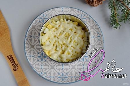 بالصور كعكة سلطة الرنجة من المطبخ الروسى،اكلات راس السنه 2020