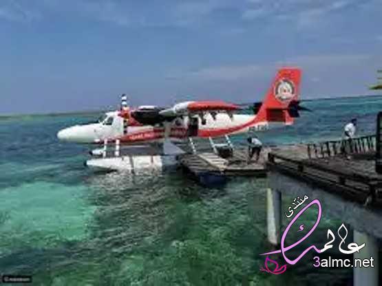 نصائح قبل السفر إلى جزر المالديف اختيار منتجعك بجزر المالديف الوصول إلى جزر المالديف 2020