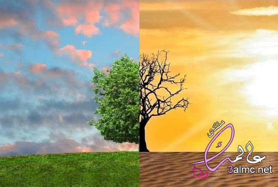 عناصر المناخ.. كيف تحدد الطقس السائد؟