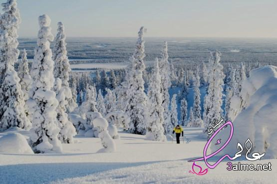 فنلندا سياحة،كيف تقع في حب فنلندا؟